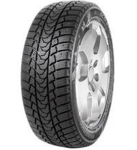 Michelin Polarice1